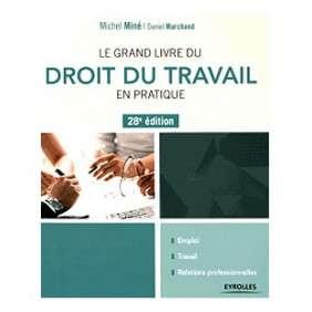 LE GRAND LIVRE DU DROIT DU TRAVAIL EN PRATIQUE 28E EDITION