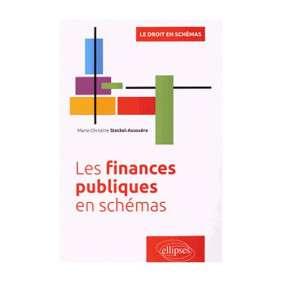 LES FINANCES PUBLIQUES EN SCHEMAS-STECKEL